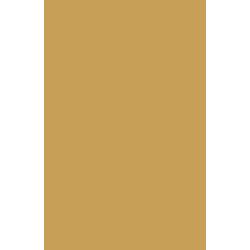 Icones_v3_Azeite-de-Oliva-1
