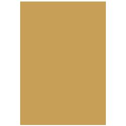 Icones_v3_Whey-Protein-Isolado-2