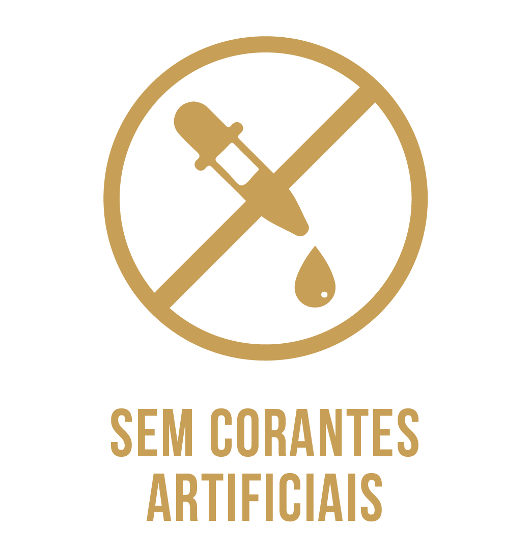 Icones_v6_SEM-CORANTES-ART