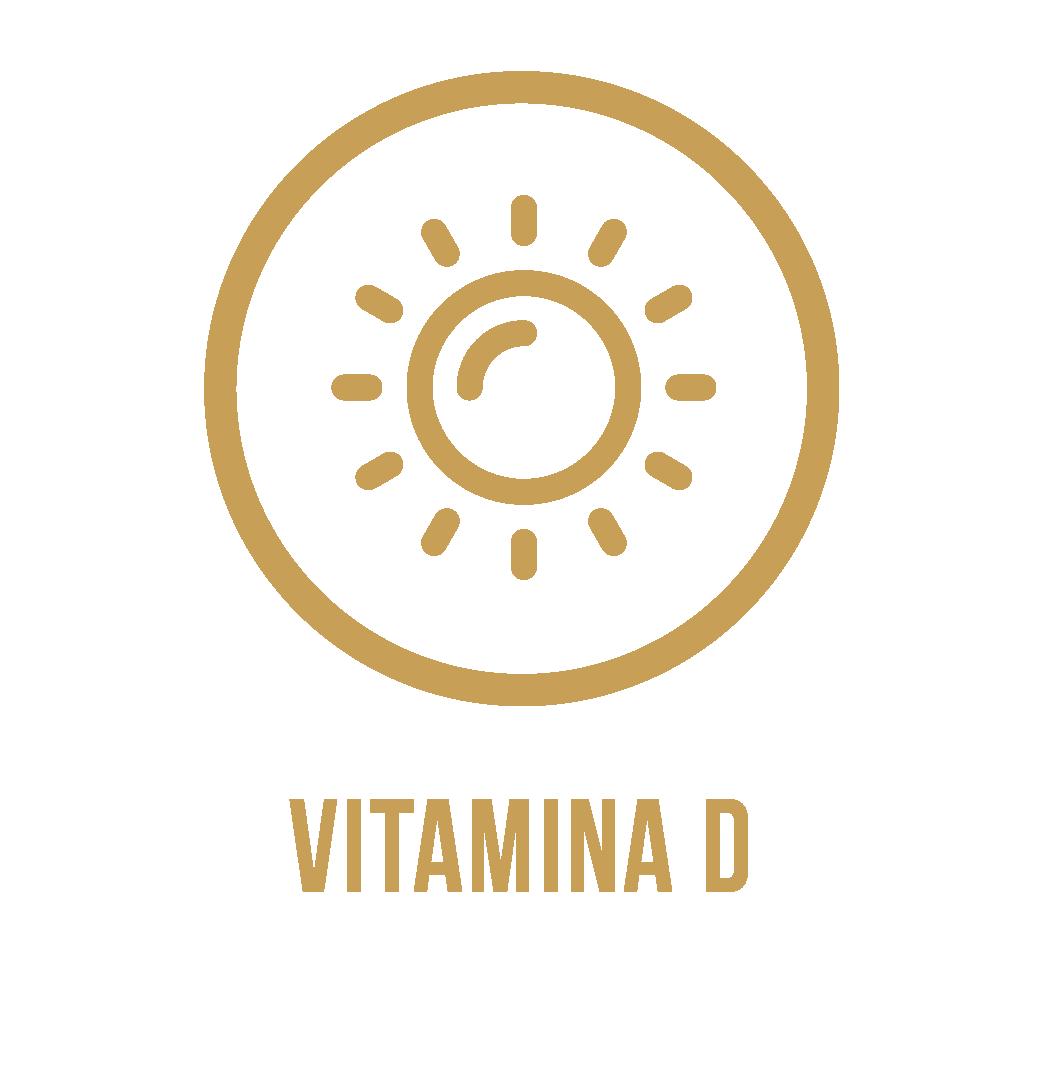 Icones_v6_VITAMINA-D